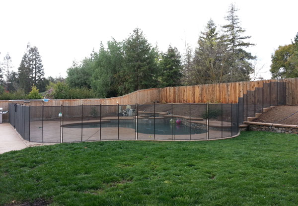 5' Tall Pet Mesh with Brown Trim