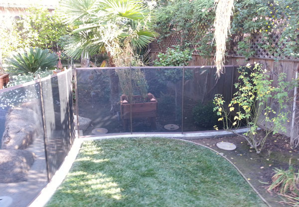 Pet Mesh Fencing with Concrete Curb